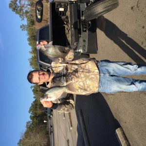 "Lake wateree, sc eaters. 15-15.5"" crappie"